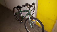 Triumph mountain bike - used condition only $35