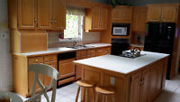 Used Kitchen Cabinets, Island, Sink, and Countertops for Sale!