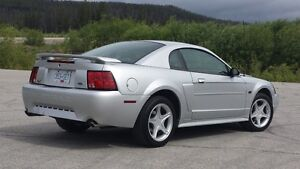 MUSTANG GT, LOW K's, IMACULATE!!!