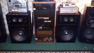 Big Vintage Audiosphere research 18l speakers
