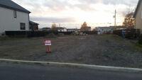Terrain de 8167 pieds carrés a vendre a St-Amable 17$/p2 nég.