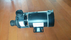 Insulated wet end pump century pool jetted Marlow 177893