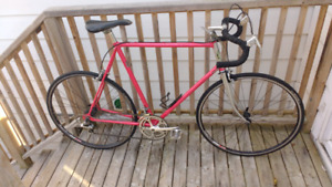 Vintage cro-mo Road Bike- fully tuned