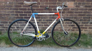 Custom Gardin Road Bike (fixie) - $400
