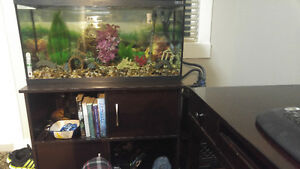 38 gallon aquarium open to offers