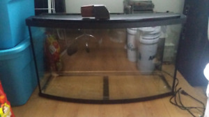 Aquarium 45gallon 50$