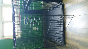 Great Condition Extra Large Dog Cage