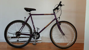 NEW PRICE - Specialized Rockhopper 1993 - great condition!