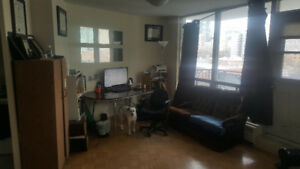 Beautiful Studio Apt Near Yonge and College Available Feb 1st