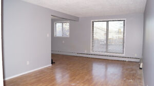 REDUCED: Fully Renovated 2 bed Condo - Ready to move in Edmonton Edmonton Area image 7