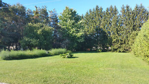 One Hour Commute to Peaceful Living Kitchener / Waterloo Kitchener Area image 9