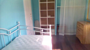 Female room for rent ( Along Oxford St. East, Fanshawe College ) London Ontario image 1