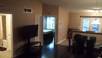 Spacious 900 sqft. Condo fully furnished