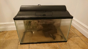 10 gallons fish tank with powered filter