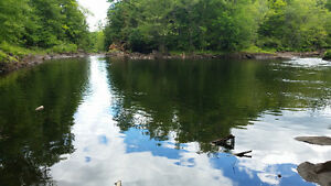 2000 feet Waterfront property on Secluded Lake and River. Peterborough Peterborough Area image 5