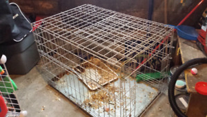 Foldable Large dog cage for sale