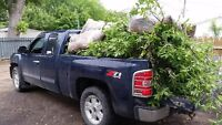 tree removal yard work cleanups