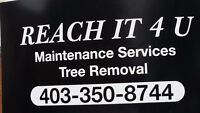 Reach It 4 You Maintenance services and Tree Removal