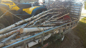 BIRCH sticks/logs for crafting ~or whatever you can think of! London Ontario image 3