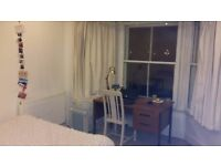 Wonderful centrally located double room available