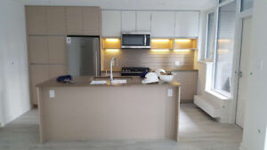 SFU brand new three bedroom townhouse for rent