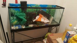 Aquarium grand avec sa table en métal