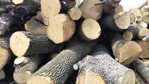 Hardwood firewood logs 6 bush cords/load FREE delivery!