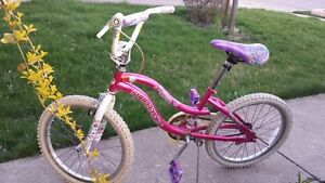 Girl's Bike in Good Condition