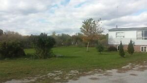 HOUSE FOR SALE AS IS ON ACRE OF LAND Kawartha Lakes Peterborough Area image 2