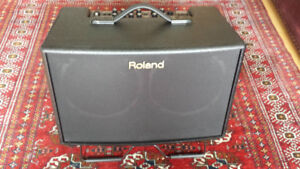 Roland Acoustic Chorus guitar and vocal amp, small P.A.