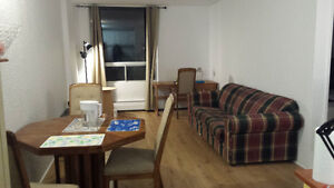 NOW: 1 bdrm apt., South End (sublet until June 30 or 1 yr-lease)