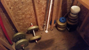 DUMBBELL 100 POUNDS WEIGHT