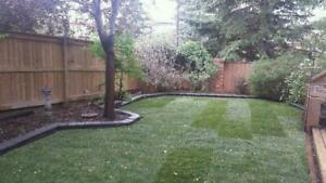 New Grass | Sod Installation | FREE ESTIMATES