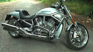 HD VROD 10th anniversary special