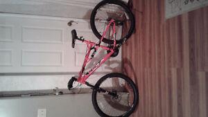 CCM mountain bike NEW