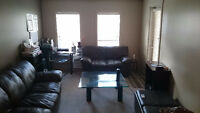 room available immediately to rent near mru *rent reduced*