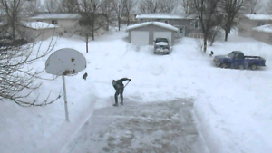Snow Removal (High Quality, Affordable Price)