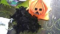 Halloween costumes/accessories
