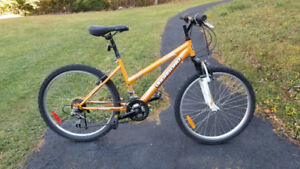 Girl's 24-inch bicycle, lightly used