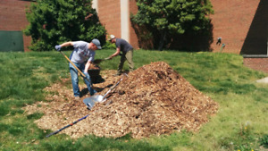 Wanted free wood chips, manure or straw