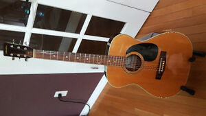 Diastone Acoustic Guitar