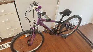 "Girls age 8-14 , 21 speed 24"" wheel bike ; Excellent condition"