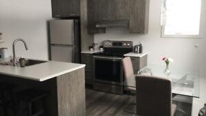 logement 3.5 a louer
