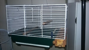 cage and stand very good shape (for small birds) canaries goldfi