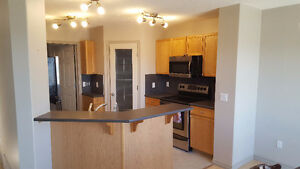 House Newly Renovated for Rent in Eagle Ridge