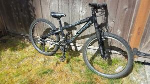 Trek MT220 Junior Mountain Bike