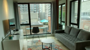 2 bedroom fully furnished apartment to rent downtown Montreal