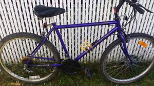 Vélo Mountain Raleigh
