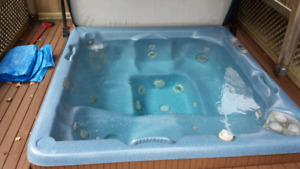 Beachcomber Hot Tub $200