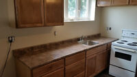 Bachelor close to Jones Lake $600 heat and lights included